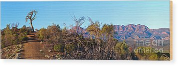 Wood Print featuring the photograph Bunyeroo Valley by Bill  Robinson