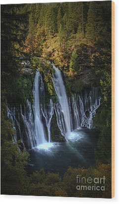Wood Print featuring the photograph Burney Falls by Kelly Wade