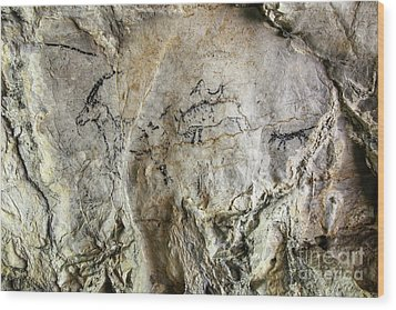 Cave Painting In Prehistoric Style Wood Print by Michal Boubin