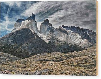 Cuernos Del Paine Wood Print by Alan Toepfer