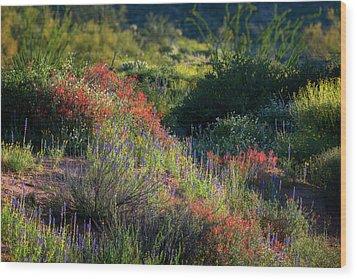Wood Print featuring the photograph Desert Wildflowers  by Saija Lehtonen