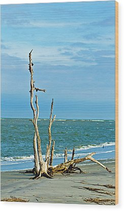 Driftwood On Beach Wood Print by Bill Barber