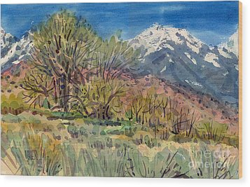 East Of The Sierra Nevadas Wood Print