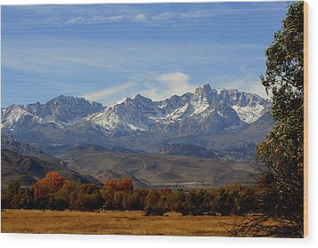 Eastern Sierras Wood Print by Lynn Bawden