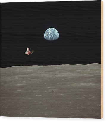 Fifi Goes To The Moon Wood Print by Michael Ledray