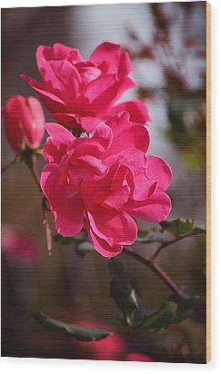 Flora No. 2 Wood Print
