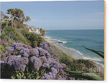 Flowers At The Beach Wood Print by Timothy OLeary