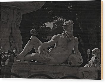 Fountain Of Orion Wood Print