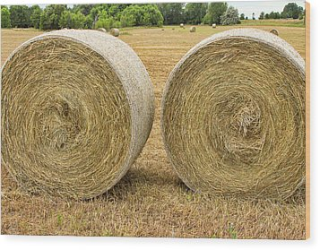 2 Freshly Baled Round Hay Bales Wood Print by James BO  Insogna