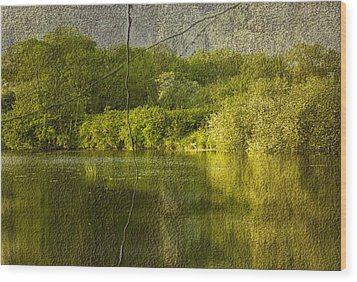 Landscape Wood Print by Svetlana Sewell