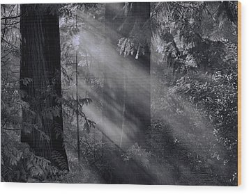 Let There Be Light Wood Print by Don Schwartz