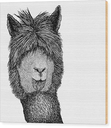 Llama Wood Print by Karl Addison