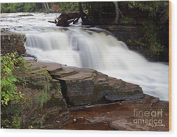Lower Tahquamenon Falls Area Wood Print