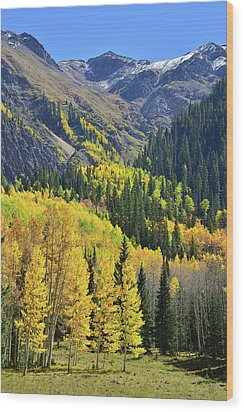 Wood Print featuring the photograph Million Dollar Highway  by Ray Mathis