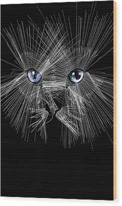 Mister Whiskers Wood Print by ISAW Gallery