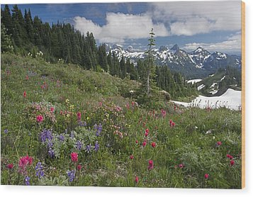Mountain Meadow Wood Print by Bob Gibbons