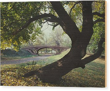 New York City, Central Parks Gothic Wood Print by Everett