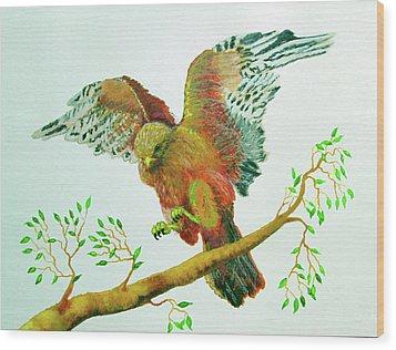 Organic Forrestry Studio Wood Print by Forrest C Greenslade PhD