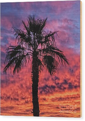 Wood Print featuring the photograph Palm Tree Silhouette by Robert Bales