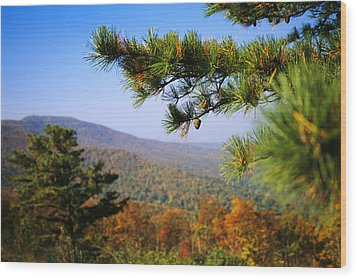 Pine Tree And Forested Ridges Wood Print by Raymond Gehman