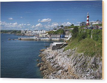 Plymouth Foreshore Wood Print by Chris Day