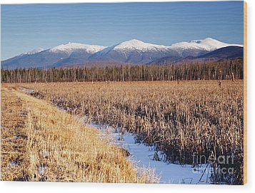 Pondicherry Wildlife Refuge - Jefferson New Hampshire Wood Print