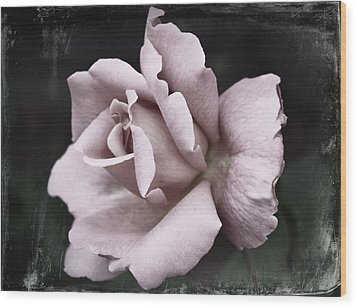 Purple Rose Wood Print by Cathie Tyler