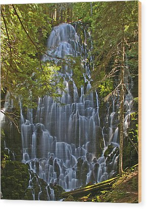 Ramona Falls Oregon Wood Print by Ulrich Burkhalter
