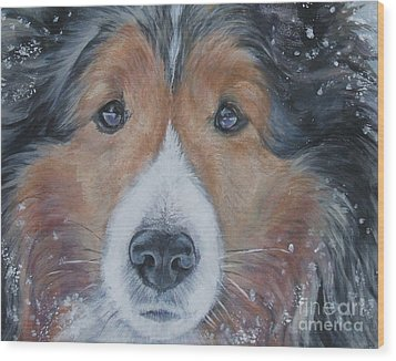Shetland Sheepdog Wood Print by Lee Ann Shepard