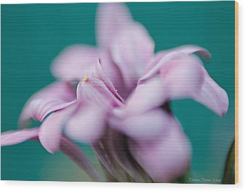 Wood Print featuring the photograph Soft Pink by Michaela Preston