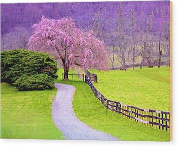 Purple Haze In The Distance Wood Print