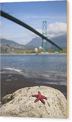 Starfish Stanley Park Vancouver Wood Print by Pierre Leclerc Photography