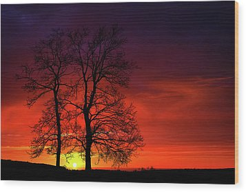 Wood Print featuring the photograph Sunset by Bess Hamiti