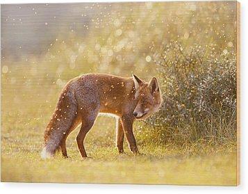 The Fox And The Fairy Dust Wood Print