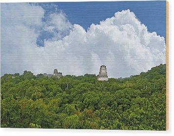 Tikal, Guatemala Wood Print by Marius Sipa