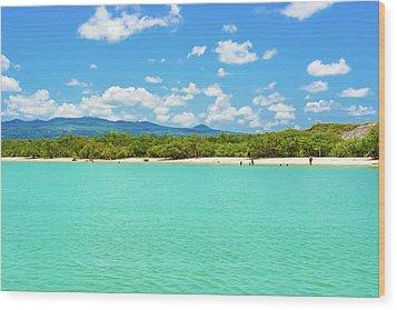 Tortuga Bay Beach At Santa Cruz Island In Galapagos  Wood Print by Marek Poplawski