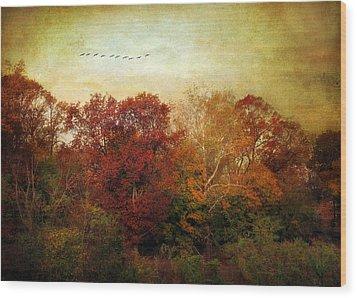 Treetops Wood Print by Jessica Jenney
