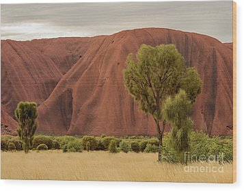 Uluru 08 Wood Print