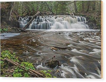 Upper Mosquito Falls Wood Print