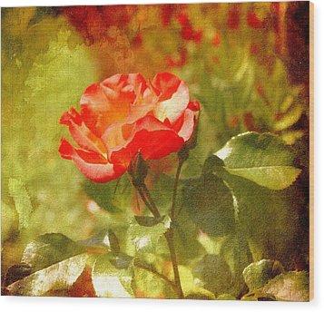 Vintage Rose Wood Print by Cathie Tyler