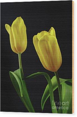 Wood Print featuring the photograph Yellow Tulips by Dariusz Gudowicz
