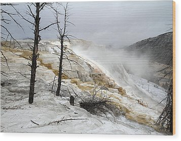Yellowstone Mammoth Hot Springs Wood Print by Pierre Leclerc Photography