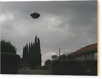 2004 Real Ufo Evidence Wood Print by Michael Ledray