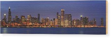 2010 Chicago Skyline Wood Print by Donald Schwartz