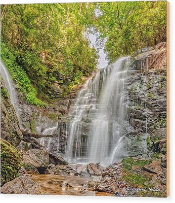 Wood Print featuring the photograph Rocky Falls by Christopher Holmes