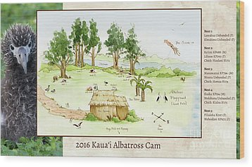 2016 Kauai Albatross Cam Map Wood Print by Elizabeth Smith