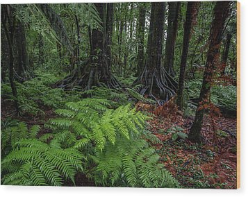 Wood Print featuring the photograph Jungle by Les Cunliffe