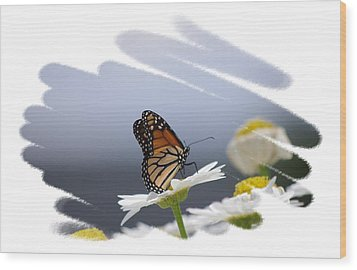 Butterfly Wood Print by Gerald Kloss