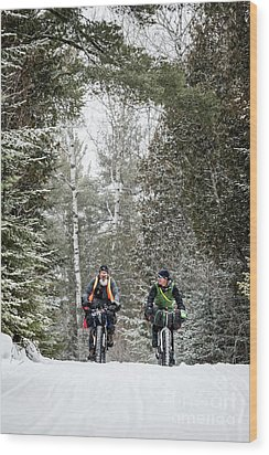 2579 Wood Print