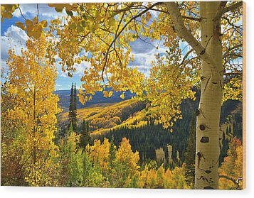 Ohio Pass Fall Colors Wood Print